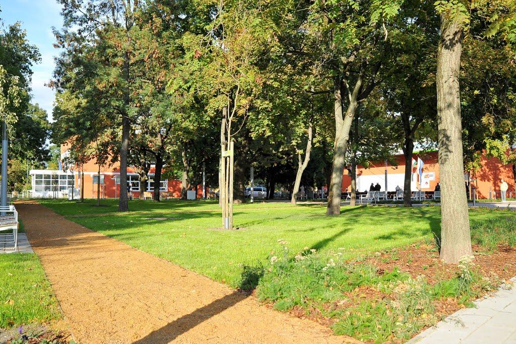 Újjávarázsolták a Radnóti Miklós Művelődési Ház parkját